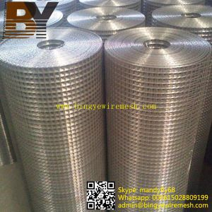 304 316 3/4 Inch Stainless Steel Welded Wire Mesh pictures & photos