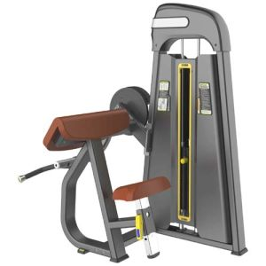 2015 Newest Fitness Equipment Camber Curl (SD1015) pictures & photos