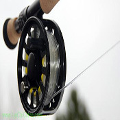 Transparent Intermediate Fly Fishing Line pictures & photos