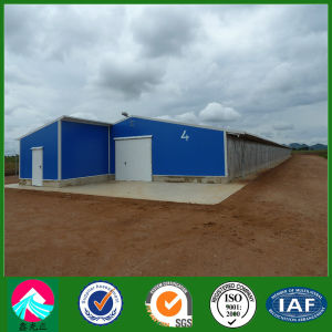 Standard Opened Style Steel Chicken House (XGZ-pH 041) pictures & photos