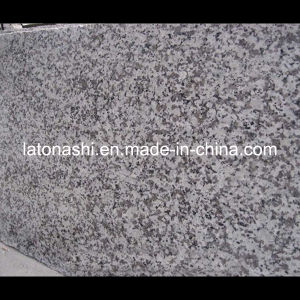 Big White Flower/Grey Granite Kitchen Countertop for Building Decoration Material pictures & photos