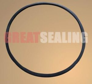 EPDM Rubber Manlid Seal with Super Performance pictures & photos