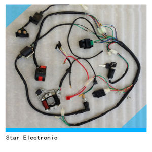 Manufacturers for Simple Wire Harness Assembly pictures & photos