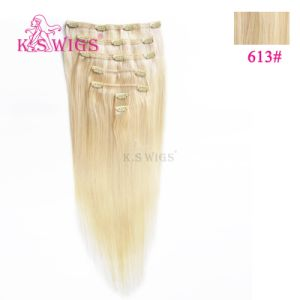 Clip Hair Russian Remy Human Hair Extensions pictures & photos