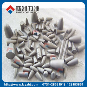 Tungsten Carbide for Rotary Teeth with Good Quality