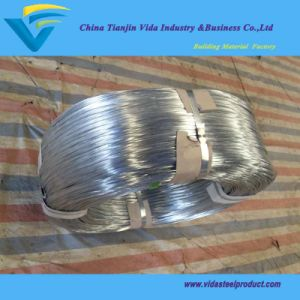 Hot Dipped Galvanized Grape Wire with Best Quality pictures & photos