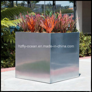 Fo-9004 Cubic Stainless Steel Planter with Box Design pictures & photos