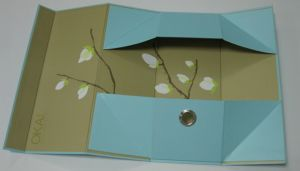 Paper Cardboard Shoe Box for Shoe Packing pictures & photos