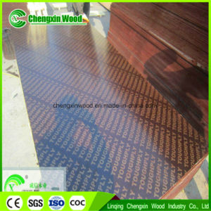 Linqing Chengxin Building Material of Film Faced Plywood pictures & photos
