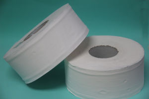 Jumbo Roll Tissue Paper Virgin 2ply pictures & photos