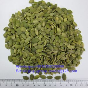 Raw Shine Skin Pumpkin Seeds Kernel AA pictures & photos