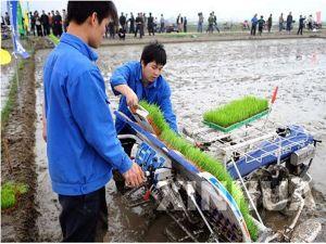Rapid Rice Transplanter (2ZT-6300B) pictures & photos