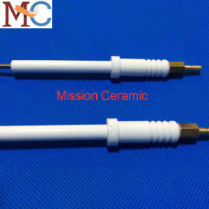 Ceramic Gas Ignition Plug pictures & photos