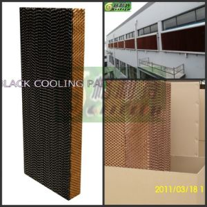 New Design Cooling Pad Black pictures & photos