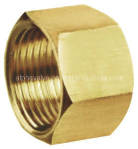 Brass Coupling Female Connector Pipe Fitting (a. 0323)