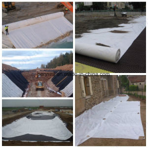Non Wovne PP Pet Geotextile for The Road Construction pictures & photos