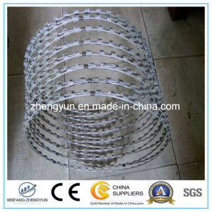 Cheap Razor Blade Concertina Barbed Wire pictures & photos