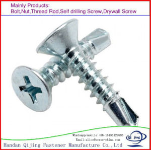 Stainless Steel Csk Screw pictures & photos
