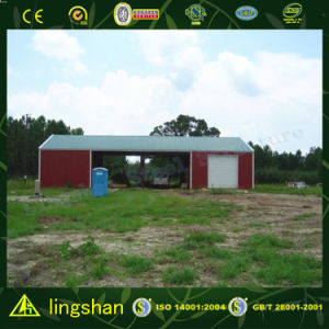 Prefab Steel Hangar (L-S-051) pictures & photos