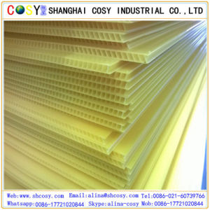 PP Corrugated Sheet PP Hollow Sheet Polypropylene Sheet pictures & photos