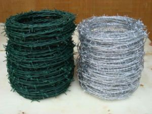 ISO Certificated PVC Coated /Galvanized Razor Barbed Wire for Fencing pictures & photos