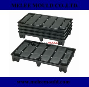 Plastic Injection Transportation Pallet Mold pictures & photos