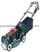 21 Inch Hand Push Lawn Mower Ant216p pictures & photos