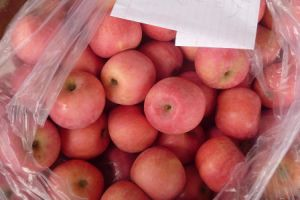 New Crop Chinese Apple pictures & photos