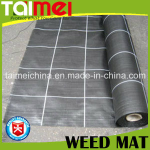 PP Silt Fence Woven/Fabric Geotextile for Weed Mat/Grass pictures & photos