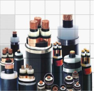 High Voltage XLPE Insulated Power Cable 3.6/6kv~26/35kv pictures & photos