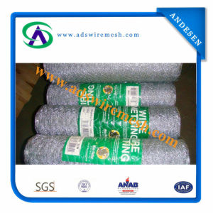 Hot Pursuit Hot Dipped Galvanized Hexagonal Wire Mesh/Hexagoanl Chicken Wire Mesh for Sale pictures & photos