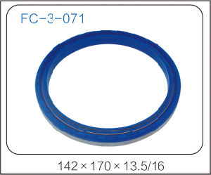 Oil Seal with Silica Gel pictures & photos