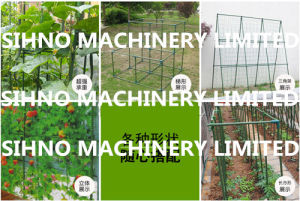 Green Plastic Coated Plant Support Stakes pictures & photos
