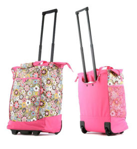 Stylish Shopping Trolley Bag pictures & photos