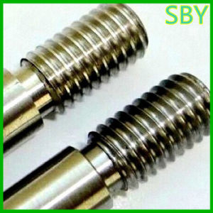 CNC Machining Screw Auto Parts with Good Quality (P063) pictures & photos