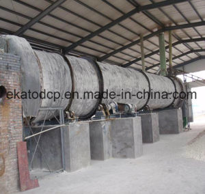 Animal Feed Dicalcim Phosphate (DCP 18%) pictures & photos