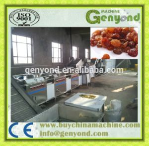 Stainless Steel Raisin Processing Machine pictures & photos