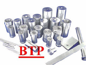 Carbide Tungsten Bolt Mould (BTP-D292)