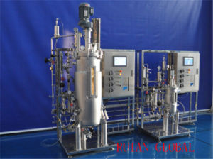 Stainless Steel Biological Pilot Fermenter Tank for Bacterial Yeast Beer Yogurt pictures & photos