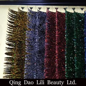 Lili Beauty OEM Volume Lash Fans Individual Lashes Knot Free Cluster Eyelashes for Sale Private Label pictures & photos
