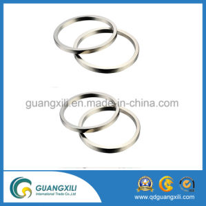 Ring Shape Neodymium Magnet with RoHS Used for Linear Generator pictures & photos