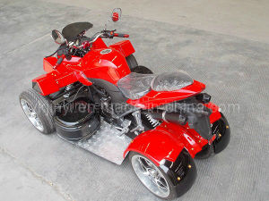 EEC Stability Racing Quad 250cc pictures & photos