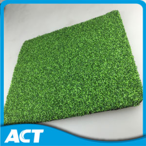 Monofilament Artificial Turf Grass for Golf Grass G13 pictures & photos
