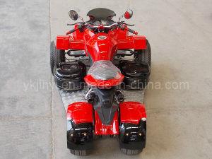 EEC Stability Racing Quad 250cc pictures & photos