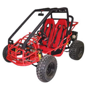 150CC/250CC, Four Stroke Go Cart with CE Certification (TY-GC150S-1)
