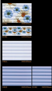 6D-Inkjet Glossy Interior Ceramic Wall Tile for Building Material 300X450mm pictures & photos