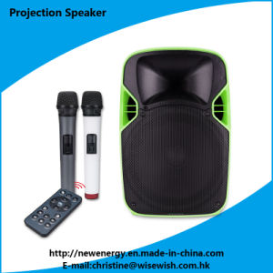 Professional Power Amplifier with LED Projector