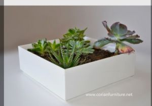 Corian Acrylic Solid Surface Flower Pot pictures & photos