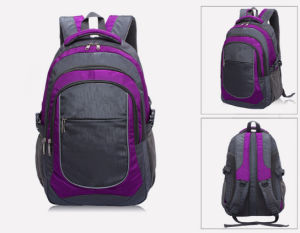 Wholesale Laptop Computer School Outdoor Leisure Ol Backpack Bag Yf-Lb1643 pictures & photos