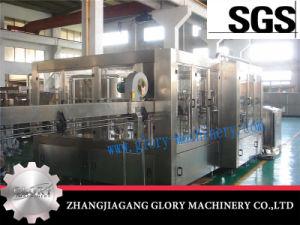 Glass Bottle Juice Filling Plant/Fresh Squeezed Juice Filling Machine pictures & photos